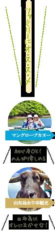 西表島マングローブカヌー&由布島水牛車観光