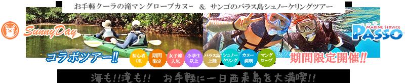 西表島マングローブカヌー&キャニオニング体験ツアー