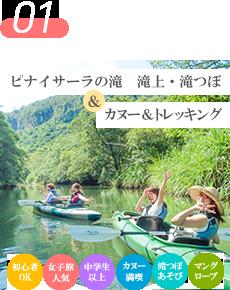 西表島ピナイサーラの滝・滝上滝つぼ カヌー&トレッキング