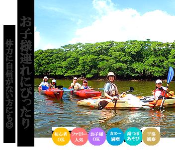 西表島マングローブカヌー&滝遊びファミリーツアー