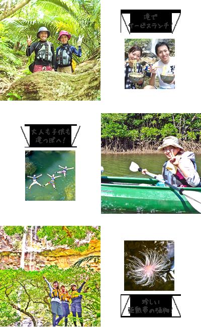 西表島ピナイサーラの滝・滝上滝つぼ カヌー&トレッキング写真