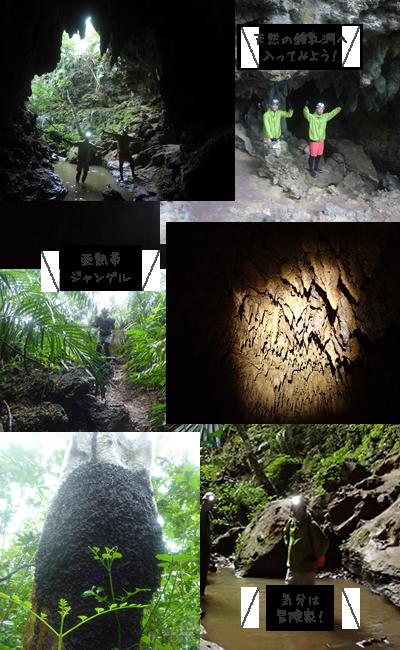西表島洞窟探検