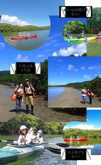 西表島漕ぐだけ「マングローブカヌー体験」