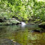 家族で楽しむ西表島!カヌー体験・トレッキングならお任せ。
