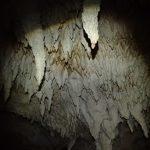 西表洞窟探検隊!!