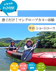 西表島半日コース・漕ぐだけ!マングローブカヌー体験