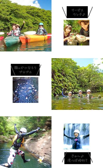 西表島マングローブカヌー&キャニオニング体験写真