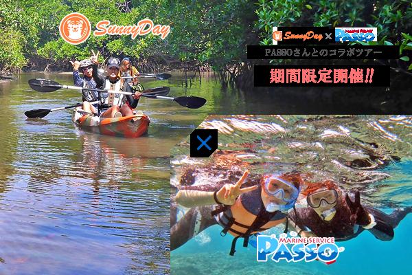 お手軽クーラの滝マングローブカヌーとサンゴのバラス島シュノーケリングツアー