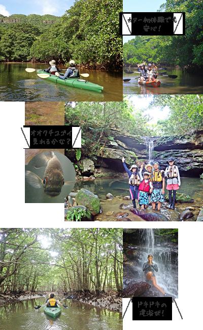 西表島お手軽クーラの滝・カヌー&トレッキング体験