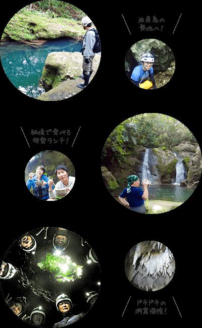 西表島ユツンの滝ジャングルトレッキング&ケイビング写真
