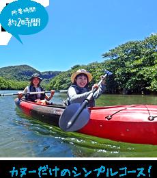 漕ぐだけ「マングローブカヌー体験」