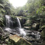 大見謝の滝
